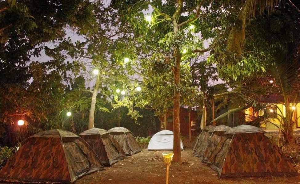 jungle-camping-in-Dandeli