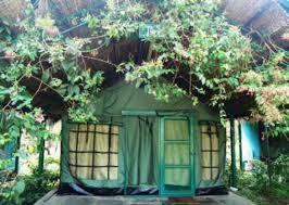kulgi-nature-camp-dandeli