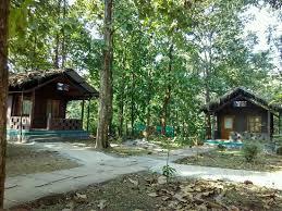 kulgi-nature-camp-in-dandeli