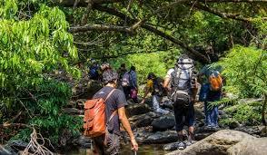 trekking-in-dandeli